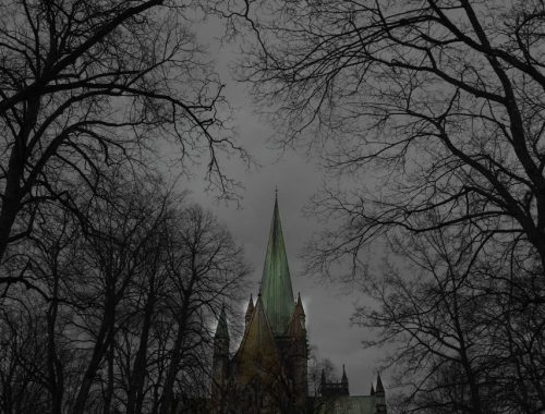 Noen bilder fra Domkirka i Trondheim
